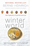 A winter reading gem: Bernd Heinrich's Winter World