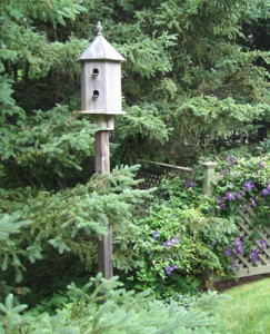 This birdhouse enlivens a dark screen of evergreens