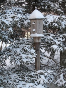 A birdhouse in winter anticipates the return and reawakening of life
