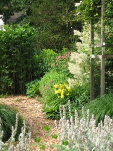 My cottage garden—Sherman, CT